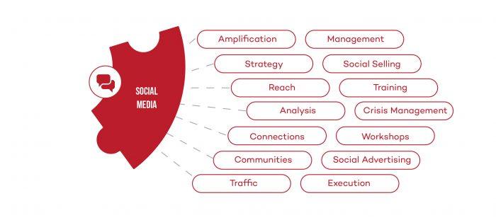CA-Social-Media-service-mini-infographic-700x311