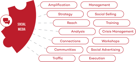 CA-Social-Media-service-mini-infographic